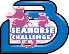 SeahorseChallenge-e1510984052170 Event